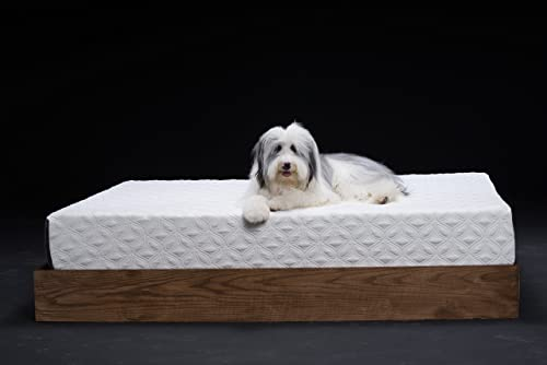 Cocoon by Sealy Firm Foam Mattress, Twin