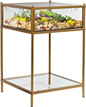 "D'Eco Square Terrarium Display End Table with Reinforced Glass in Gold Iron- 18"" Width x 18"" Length x 27"" Height"