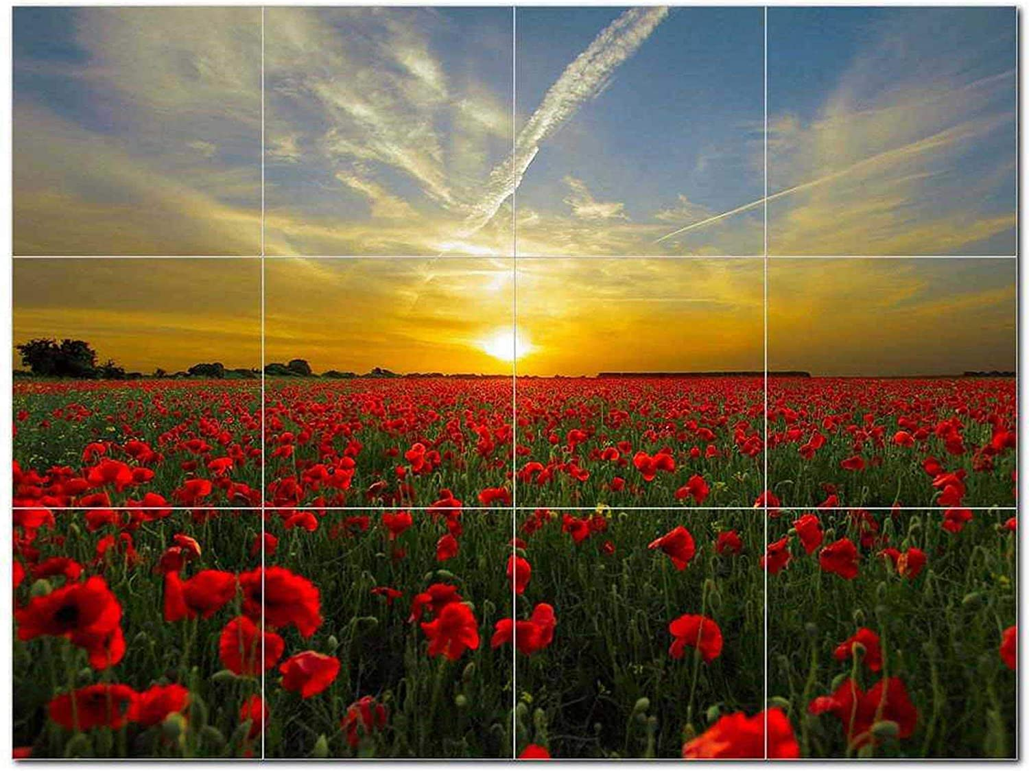 Flower Fields OFFicial site Ceramic Tile Mural Decorative Beauty Manufacturer OFFicial shop Nature in Daw