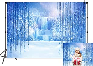 Daniu Snow Queen Theme Background Snow Winter Holiday Party Photography Background Anna and Elsa Disney Princess Birthday Party Photo Booth Backdrops