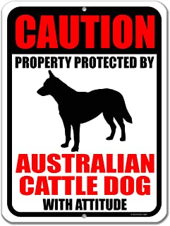 Honey Dew Gifts No Trespassing Signs, Caution Property Protected by Australian Cattle Dog with Attitude 9 inch by 12 inch Metal Aluminum Dog Sign, Made in USA