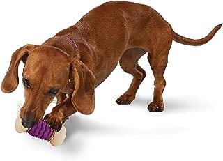 PetSafe Busy Buddy Nobbly Nubbly Dog Toy