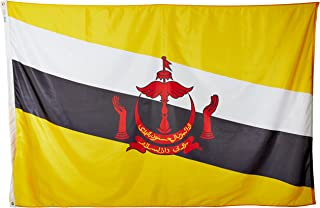annin flagmakers 221309尼龙 solarguard nyl-glo brunei 国旗,5X 8'