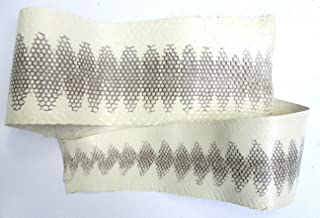 Snake Skin Snakeskin Black and White Seasnake: 26+ inches Long, 4 inches Wide