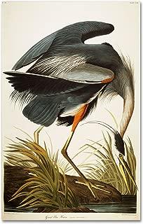 Best bird prints on canvas Reviews