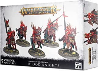 Warhammer AoS - Soulblight Gravelords Blood Knights