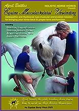 Holistic Horseworks Equine Musculoskeletal Unwinding Massage Course