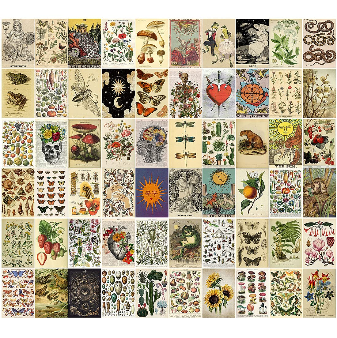 60PCS Vintage Posters for Room Aesthetic, Vintage Botanical Illustration Tarot Aesthetic Pictures Wall Collage Kit, Bedroom Decor for Teens Boys Girls, Room Decor Aesthetic, Cottagecore Decor