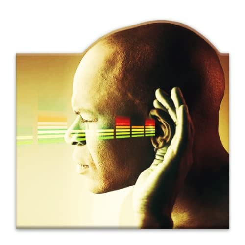 Tinnitus: The Cure