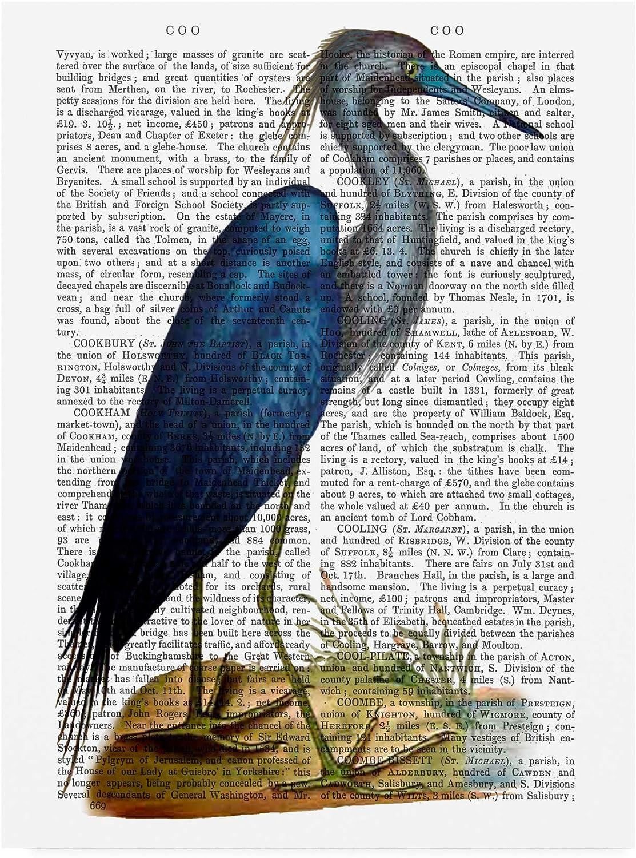 Trademark Fine Art bluee Heron Modern 2 by Fab Funky, 14x19