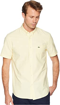 Short Sleeve Oxford Button Down Collar Regular