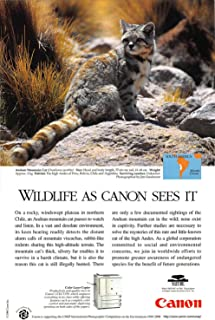 Best canon print ad Reviews
