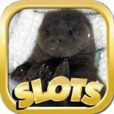 After Night Sala Slots Machines Games Free - Slot Machine With Bonus Payout Games