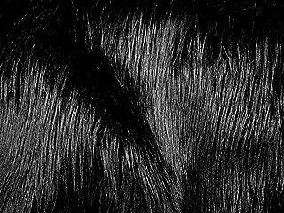 Faux Fur Luxury Shag Black 60 Inch Wide Fabric By the Yard (F.E.®)