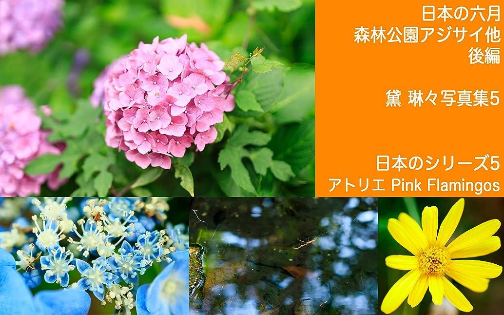 粘着性民主主義充実日本の六月 森林公園アジサイ他 後編 日本のシリーズ5: 黛 琳々写真集5