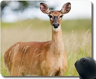 ノートパソコン、エルク鹿動物の自然のための長方形のマウスパッド - ステッチエッジ