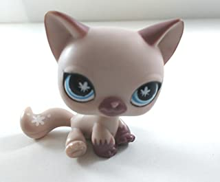 Shorthair Kitten #664 (Tan, Blue Eyes, Brown Ears and Nose, Black Eyeliner) - Littlest Pet Shop (Retired) Collector Toy - LPS Collectible Replacement Figure - Loose (OOP Out of Package & Print)
