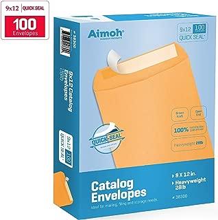 9 X 12 Self-Seal Brown Kraft Catalog Envelopes - 28lb - 100 Count (38300)
