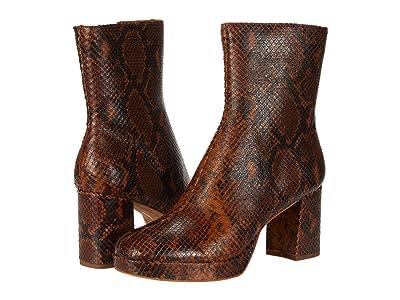 Dolce Vita Eden (Cognac Snake Print Leather) Women