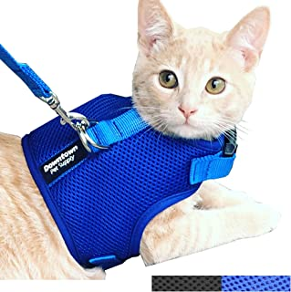 Downtown Pet Supply Best Cat Vest Harness and Leash Combo with Added Safety Features to Make it Escape Proof for Small, Me...