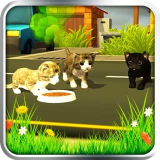 Ultimate Cat Simulator - Kitten Pet World Games For kids