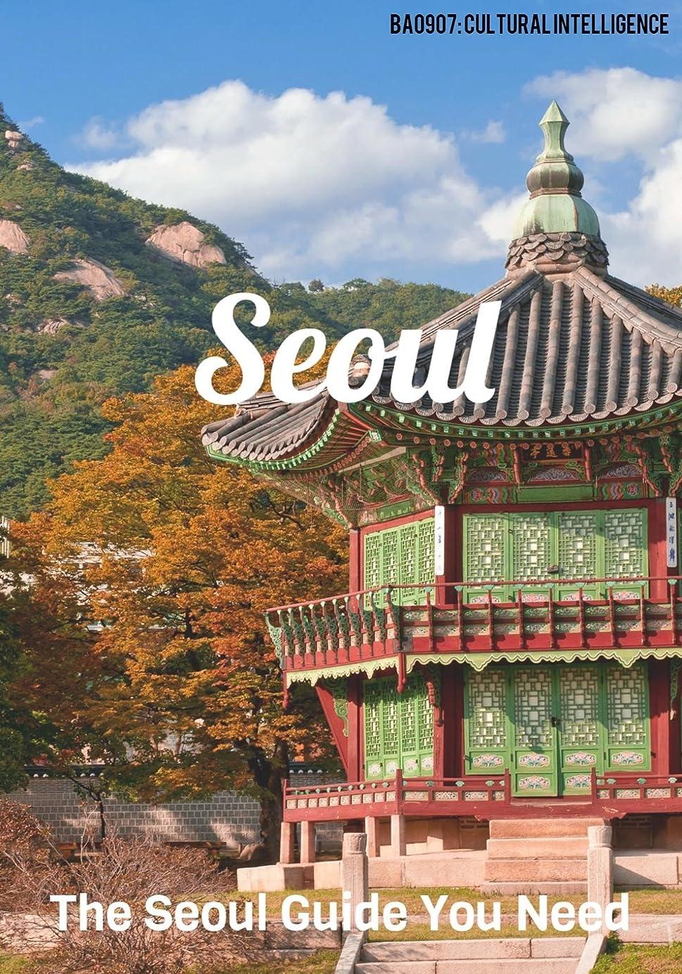 明確な登録余暇The Seoul Guide You Need: Pocket Guide to Seoul, South Korea (English Edition)