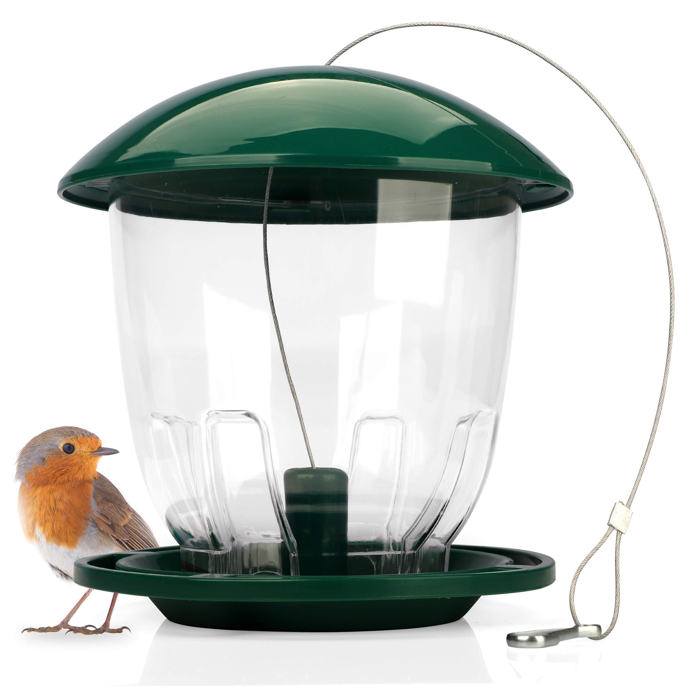 Wildlife Friend | Comedero Pájaros XXL en Cristal Acrílico - 1, 5 kg Capacidad para semillas y núcleos, columna de alimentación para pájaros, aves silvestres, cacerolas, gorriones y pájaros de jardín: Amazon.es: Jardín