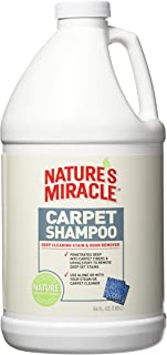 Best miracle cleaning spray Reviews