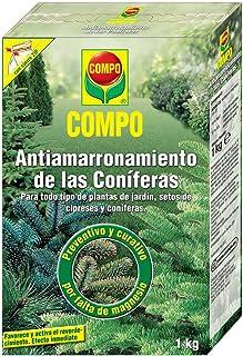 Amazon.es: Coniferas: Jardín
