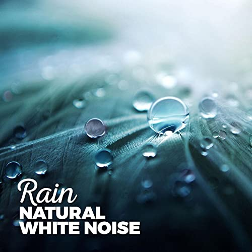 Waiting in the Rain by Sounds of Nature White Noise Sound