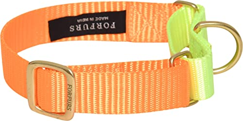 FORFURS Dog Collar Small (11-15) inch Martingale Collar with Brass Fittings (Neon Orange x Lime Green)