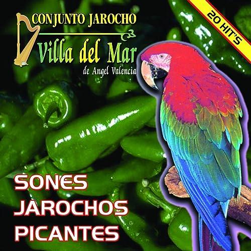 Sones Jarochos Picantes de Conjunto Jarocho Villa Del Mar De ...