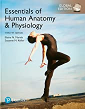 Essentials of Human Anatomy & Physiology, Global Edition + Anatomy and Physiology Coloring Workbook: A Complete Study Guide, Global Edition