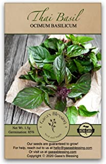 Gaea's Blessing Seeds - Thai Basil Seeds (500 Seeds) Non-GMO - with Easy to Follow Planting Instructions - Open-Pollinated...