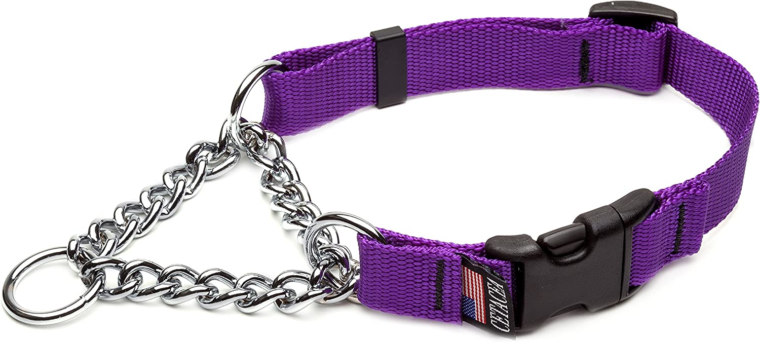 Cetacea Chain Martingale Collar with Quick Release, XSmall, Purple