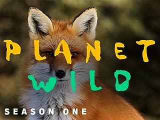Planet Wild