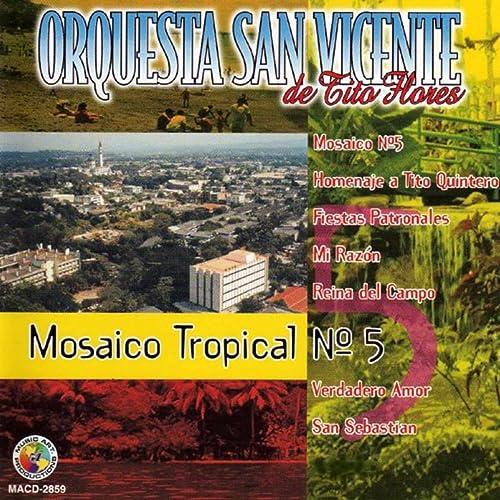 Amazon.com: Mosaico Tropical No. 5: Orquesta San Vicente de ...
