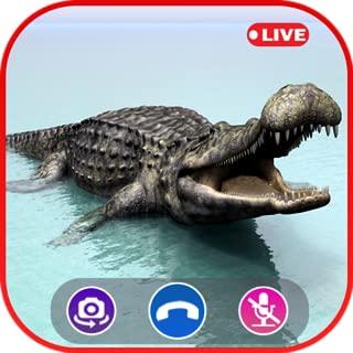 Call Video Crocodile Simulator - Prank Call Apps