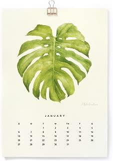 Best clip art green leaf Reviews