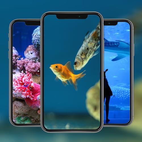 Aquarium Wallpaper HD