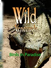 Wild Venezuela - Birds in Paradise