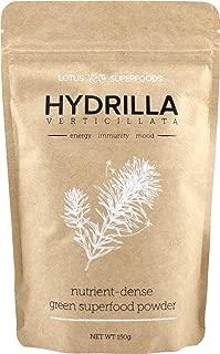 Best hydrilla verticillata powder Reviews