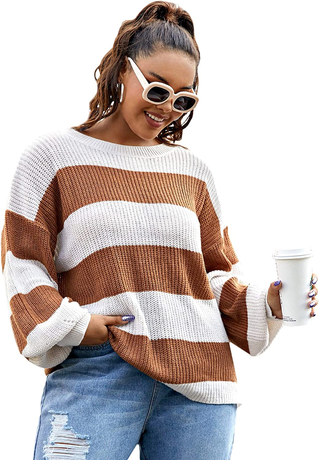Floerns Women's Plus Casual Crew Neck Long Sleeve Color Block Knit Loose Pullovers Sweater