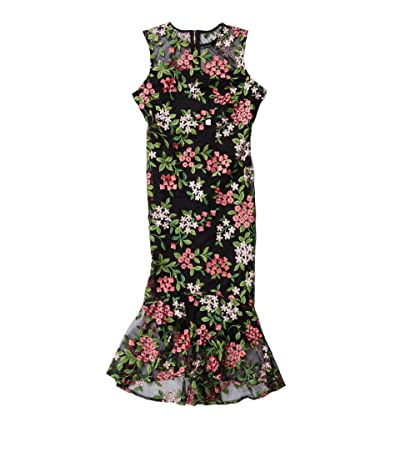 Calvin Klein Embroidered Lace Dress with Illusion with Ruffle Hem (Black/Multi) Women
