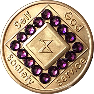 10 Year NA Medallion Bronze Purple Swarovski Crystal Chip X