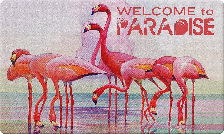 Regular dealer Toland Home Garden Popular shop is the lowest price challenge 800411 Flamingo Paradise 30 Decorat x Inch 18