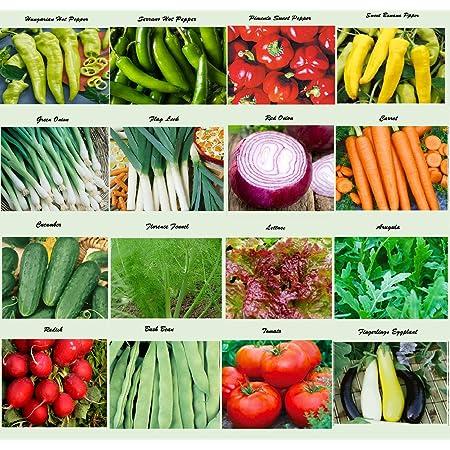Organic Vegetable Seeds 21 Variety Garden Emergency Survival Heirloom Seed Set..