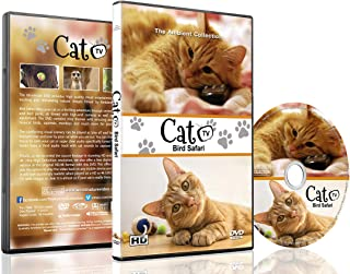 Family Cat DVD - Cat TV - Entertain your Cats with Stimulating Images of Cute Little Animals and Birds in Natural Sounds or Music