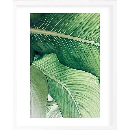 postergaleria Cadre Photo |50x70 |Blanc |Bois |Plexiglas |8 Couleurs |5 Tailles |Cadre d'affiche |Cadre Photo