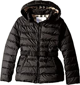 Burberry Kids - Janie Puffer Jacket (Little Kids/Big Kids)